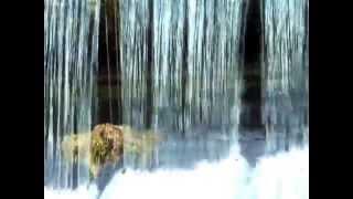 preview picture of video 'Jaz Klapowy - Lanie Wody - Kanał Gliwicki upuszcza wodę do Kłodnicy'