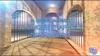 'Le 5 trappole del narciso' episoode image