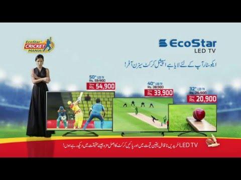 EcoStar Cricket Mania