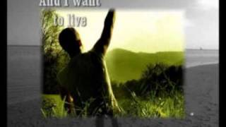 The way I was made - Chris Tomlin - With lyrics