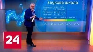 Тридцать школьников запустили на смартфоне приложение и попали в больницу - Россия 24