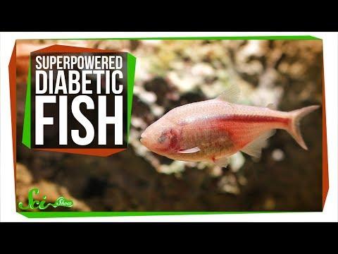 La durata di insulina Protafan