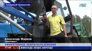 В Северном Казахстане успешно развивают фермерское хозяйство