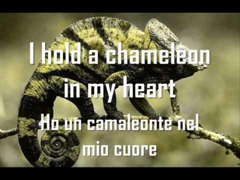 Elisa - Chameleon con testo in inlgese e in italiano