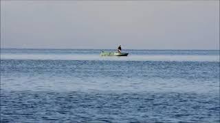Браконьеры добывали тайменя в заливе Набиль