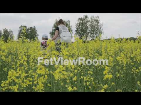 Slow motion. Young woman with little girl walk by the flowering field of rape