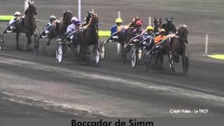 Video  de 1/85 BOCCADOR DE SIMM #2