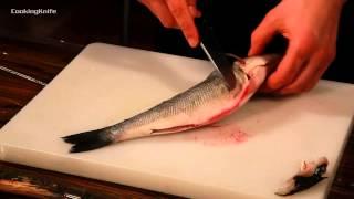 Смотреть онлайн Как разделать рыбу на филе