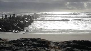 Pacific Ocean Roars