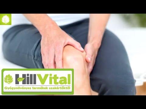 Séta fájdalmak a csípőízületekben