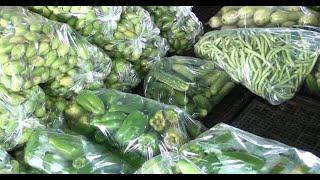 Preços de frutas, verduras e legumes são reajustados