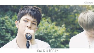 엔플라잉 N.Flying- HOW R U TODAY [BGM ]LIVE 라이브