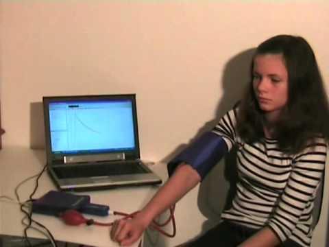 Effet leonurus sur la pression artérielle