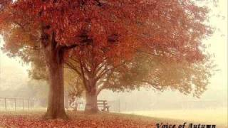 Nujabes - Voice of Autumn