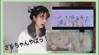 (日本語)(engkor Sub) Iz*one 아이즈원  'violeta 비올레타' Mv Reaction  Amika