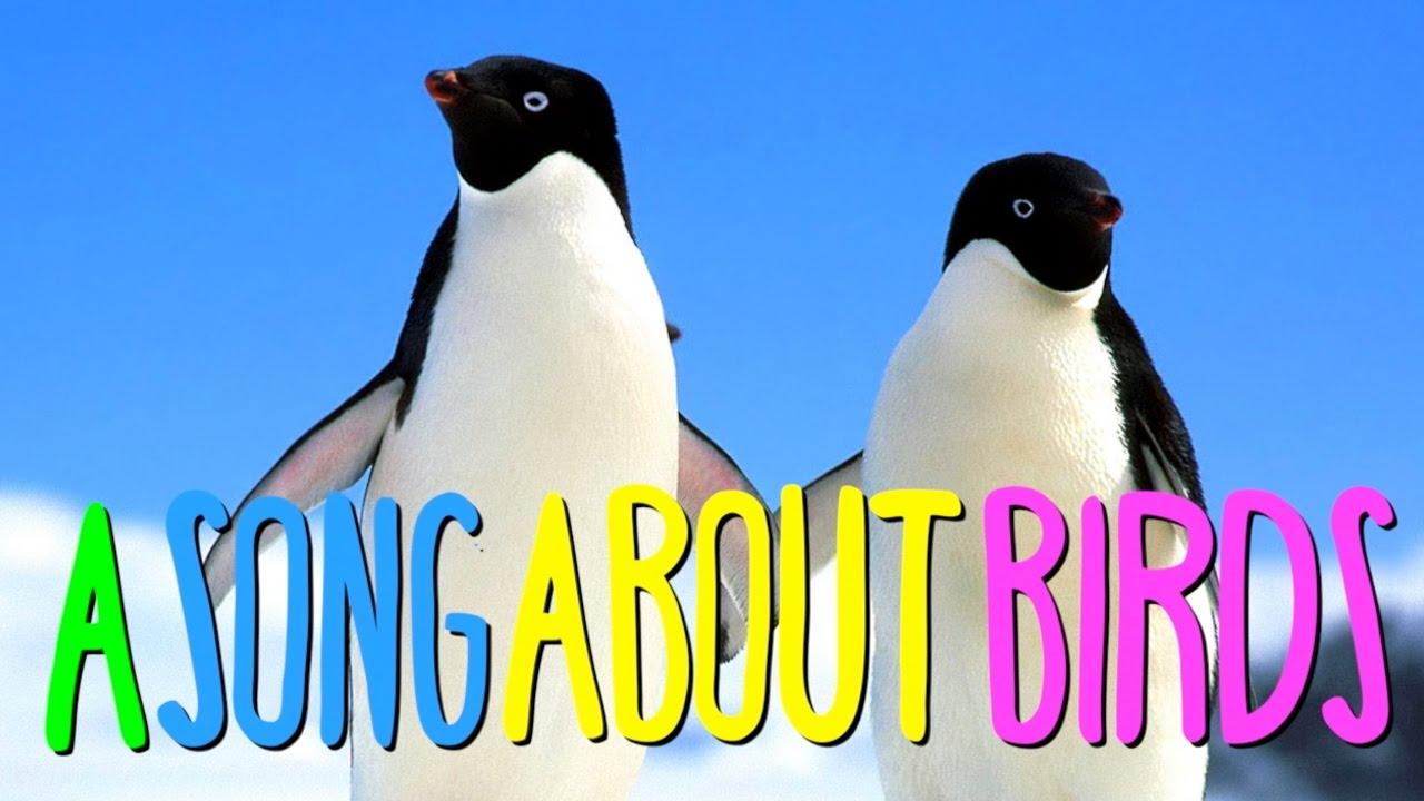 An Australian Song About Australia's Worst Bird