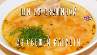 🍲 ЩИ СО СВИНИНОЙ ИЗ СВЕЖЕЙ КАПУСТЫ. Рецепт вкусных щей из свинины и свежей капусты