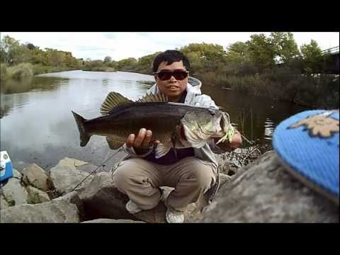 BASS FISHING AT SAN DIEGO RIVER