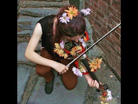 Electric Daisy Violin Cover