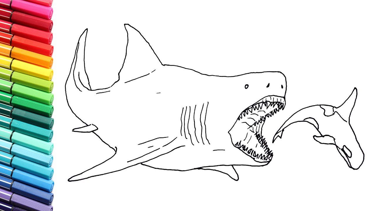 Drawing and Coloring The Megalodon - Megalodon Shark Color ...