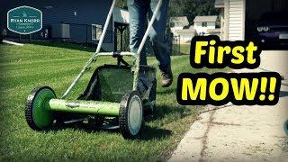 First Mow on New Lawn!! + Growth Regulator, Overseeding Bluegrass
