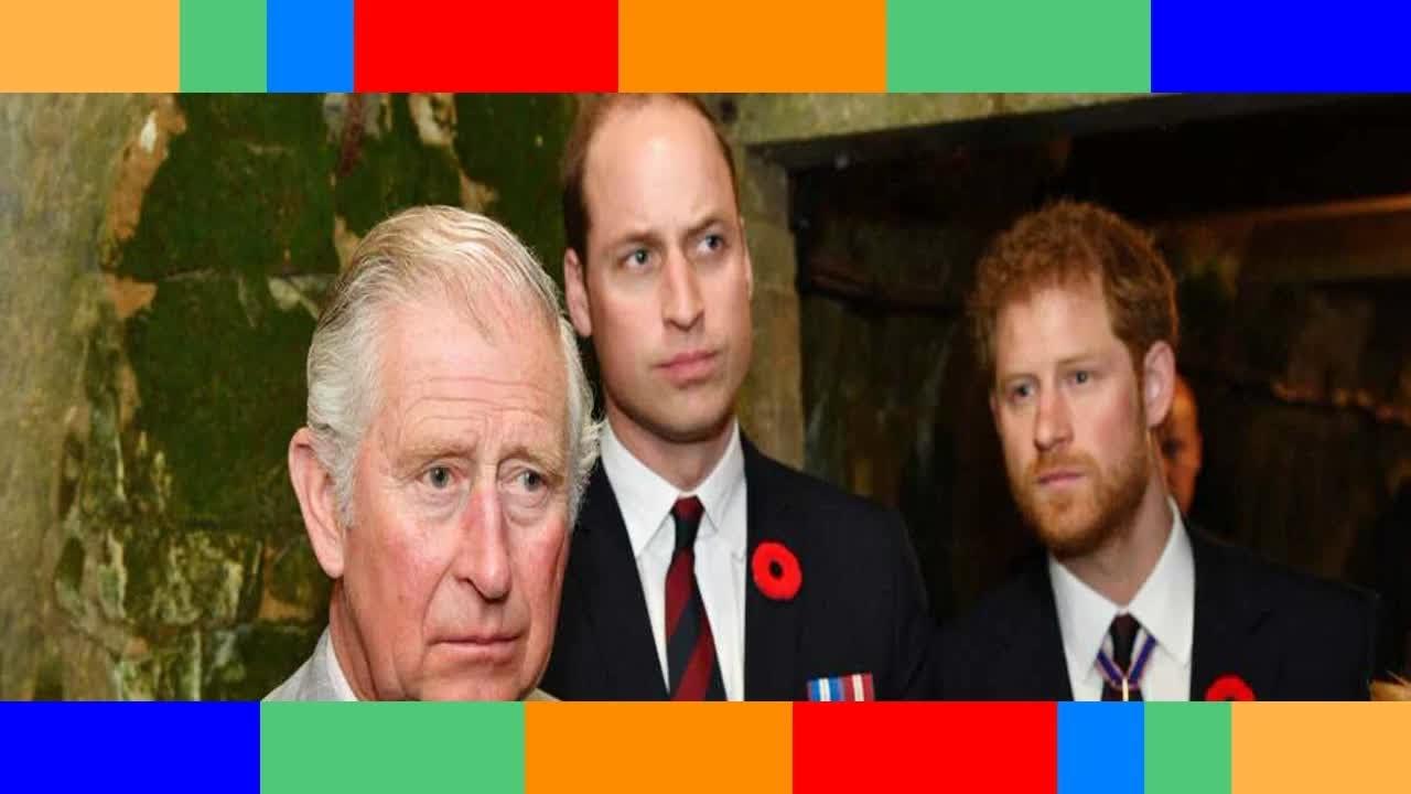 Le prince Charles pourquoi est il incapable de réconcilier ses fils Harry et William