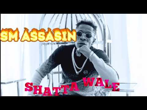 "Shatta Wale – ""SM Assasin"""
