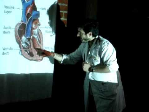 Hipertensión arterial e hipotiroidismo