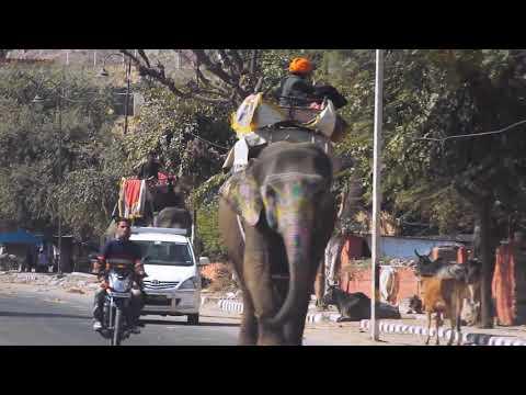 Motorbike Tours Rajasthan