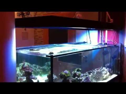 Aquariumabdeckung Automatisch