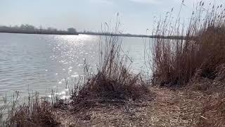 Рыбалка в Краснодарском крае Краснодарский край 2020