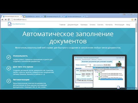 Видеообзор DocWebService