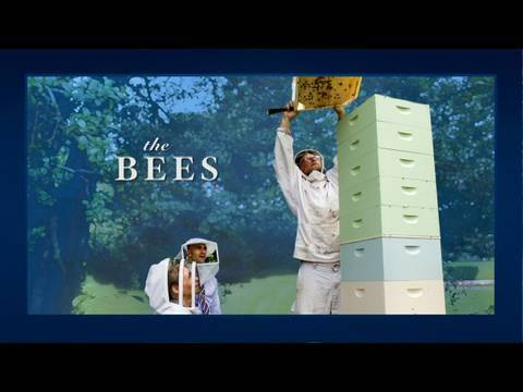 video:Inside The White House - Bees!