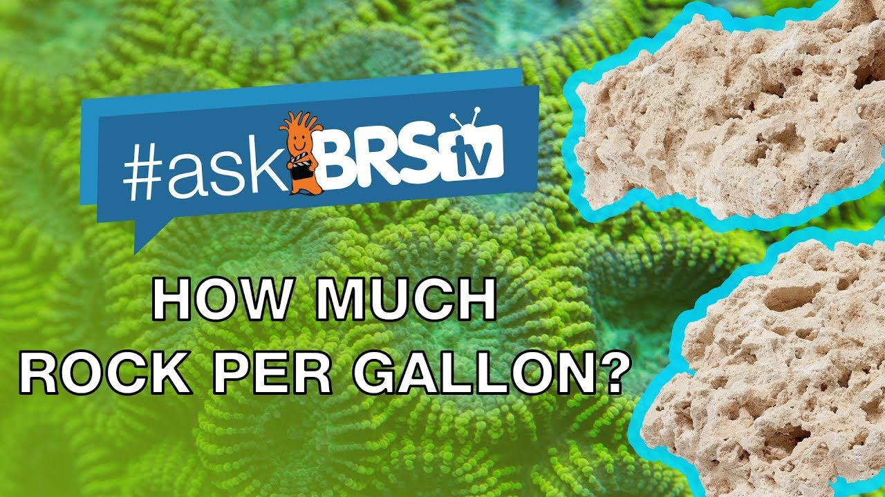 How much rock do I need for my tank using Reef Saver Rock per gallon? - #AskBRStv