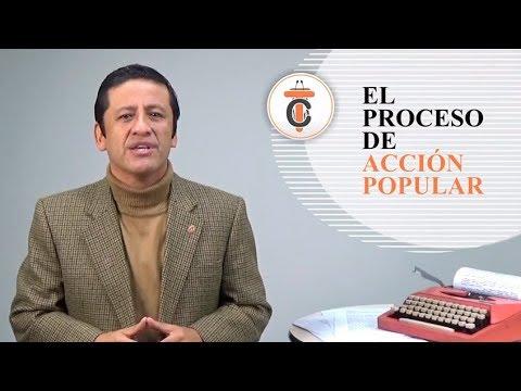 EL PROCESO DE ACCIÓN POPULAR - Tribuna Constitucional 58- Guido Aguila Grados