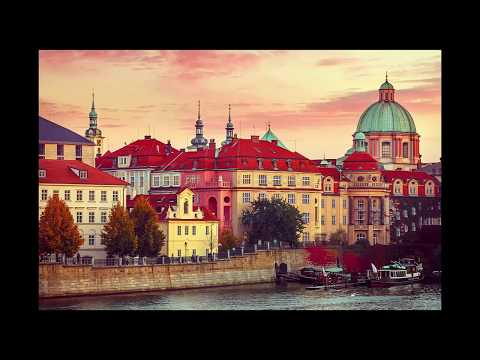 Работа в Чехии. Как отследить статус заявления на чешскую визу без СМС