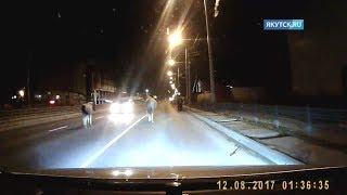Смотреть онлайн В Якутске сбили насмерть лошадь (18+)