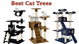 Best Cat Trees 2019 | Top Cat Tower Reviews