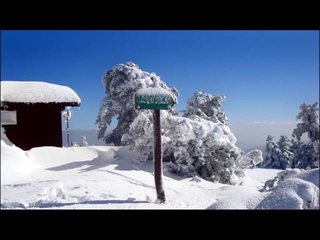 Καλοσώρισμα του χειμώνα από την Πάρνηθα
