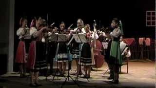 preview picture of video 'Zostrih Koncertu ľudovej hudby ZUŠ Snina 2012'