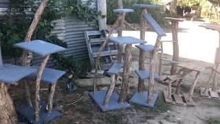 Cool Natural Timber Scratching Posts