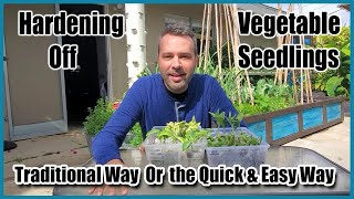 "Hardening Off Your Seedlings - Traditional Way and an Easier ""Lazy"" Way"