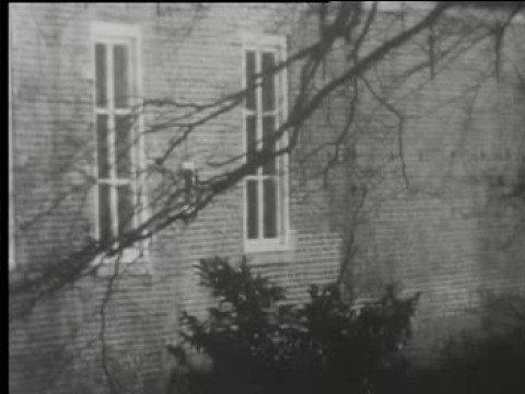 Beelden Mill 1967