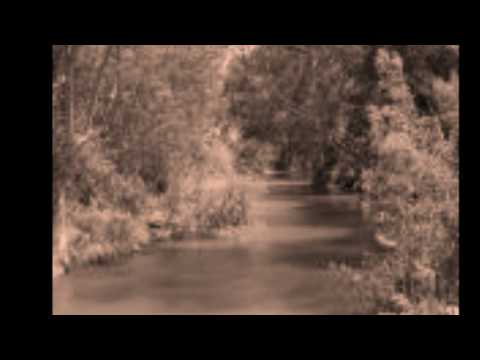 Muddy Waters-0002.wmv
