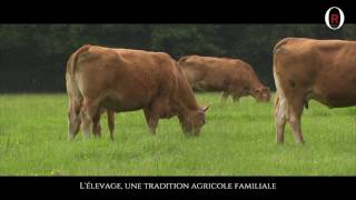 Livestock farming, a family-based agricultural tradition