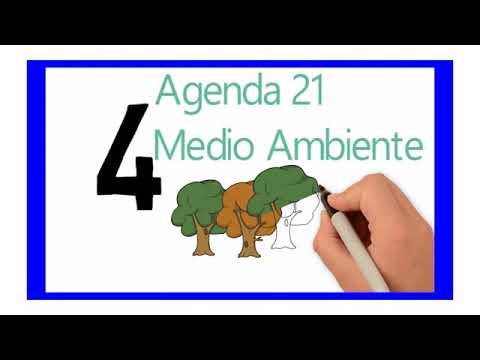 Responsabilidad Social Corporativa (RSC) Algarrobo