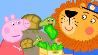 Peppa Pig Official Channel 🐢 Peppa Pig Feeds Tortoises at the Zoo