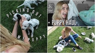 Picking Out My Dalmatian Puppy + Puppy Haul! | Olivia Rena