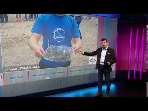 العرب اليوم - شاهد : مخلوقات غريبة تغزو شواطئ المغرب