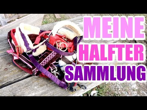 MEINE PFERDE HALFTER SAMMLUNG